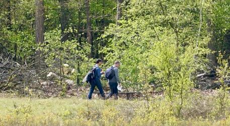 Wandelaars op de Maashorst