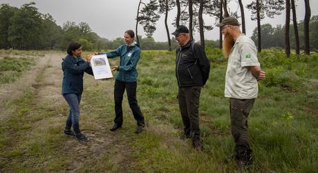 Overhandiging van officiële erkenning voor rewilding initiatief Wisenten op de Veluwe. Foto: Nelleke de Weerd, Rewilding Europe