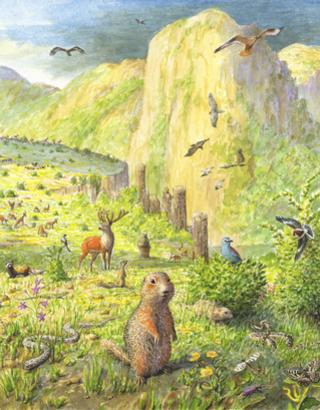 Rhodopi Mountains