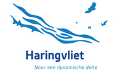 Natuurherstel Haringvliet