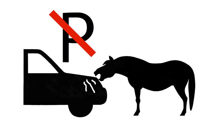 Let op! Auto's hebben aantrekkingskracht op paarden.