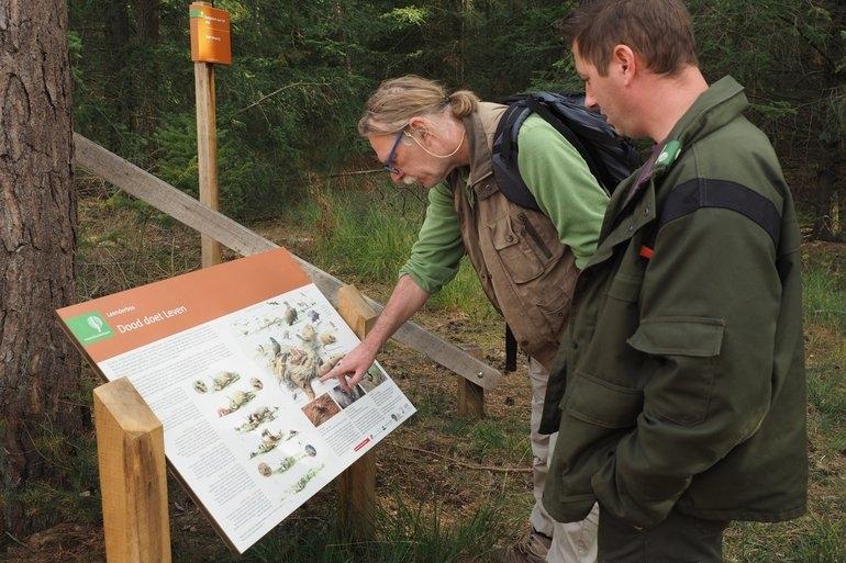 Dood doet Leven in Brabant. Foto: Jinze Noordijk, EIS Kenniscentrum Insecten