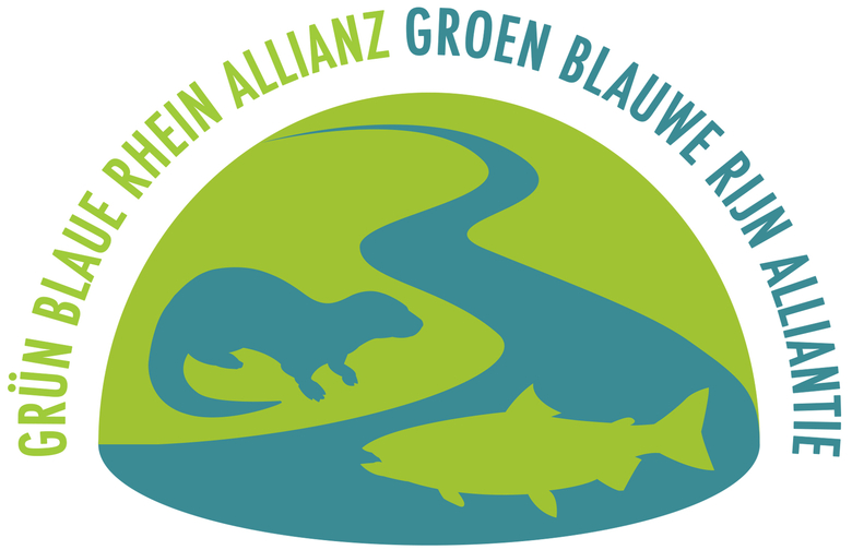 logo GBRA