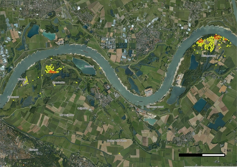 Rood omcirkeld zijn de uitzetlocaties, de gele stippen zijn de waarnemingen van de hooibeestjes tijdens de inventarisaties in 2013 t/m 2015