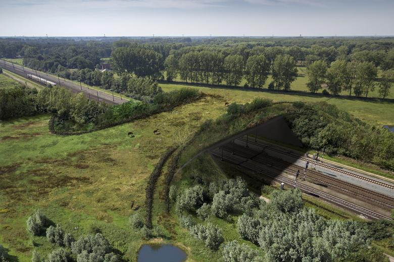 De nieuwe natuurbrug over het spoor tussen Eindhoven en Boxtel die op 7 februari wordt geopend, zorgt ervoor dat groot en klein wild veilig kan oversteken in Het Groene Woud. Bron: ProRail