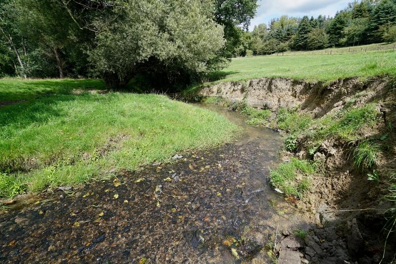 Natuurlijke beekdalen kunnen meer water bergen; de Gulp bij Teuven.