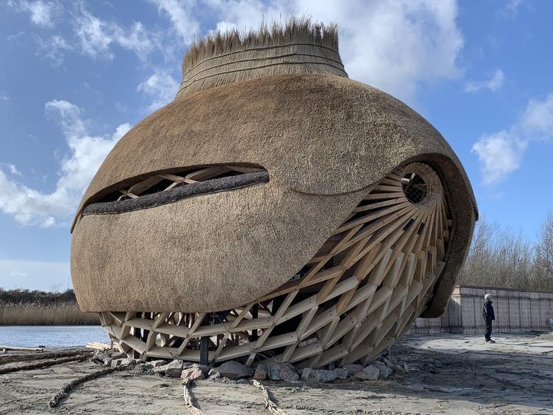Vogelobservatorium Haringvliet. Foto: Ro&Ad Architecten