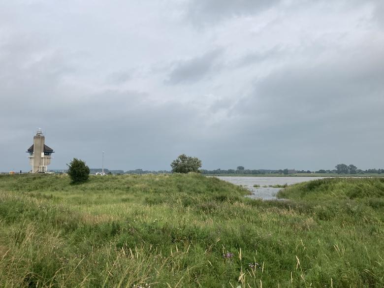 Grote delen van de Kleine Willemswaard in Tiel zullen de komende dagen overstromen. Foto: Emmie Nuijen, Rivier Actief