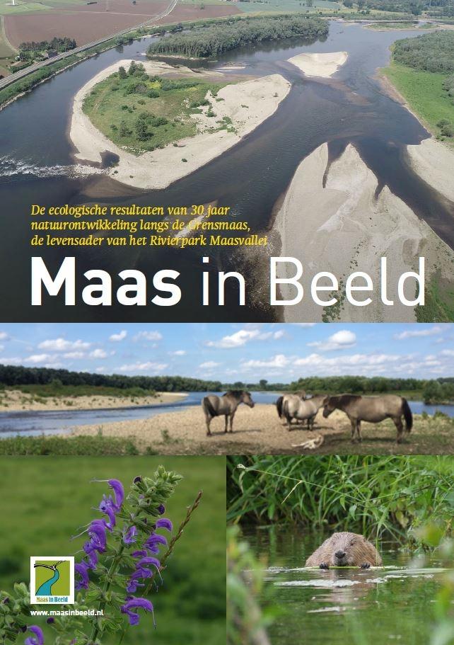 Maas in Beeld