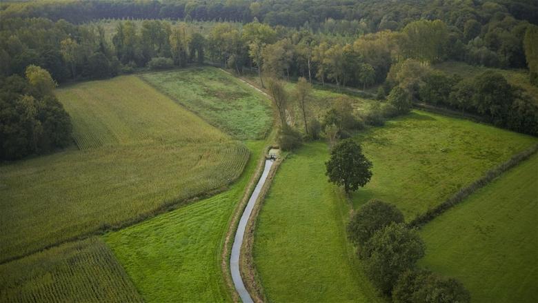 Het perceel hier nog met maisakkers, zal ruimte maken voor natuur (Foto: Bert Vervoort)