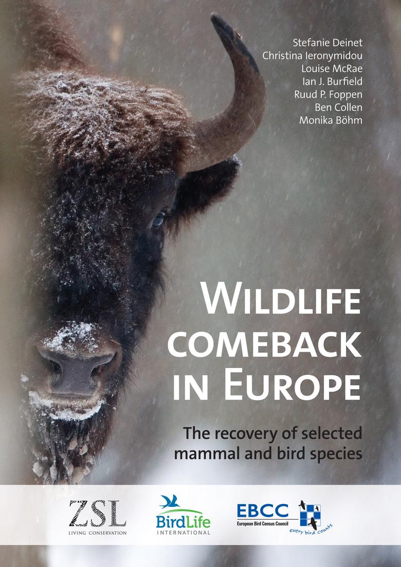 Wildlife Comeback Study