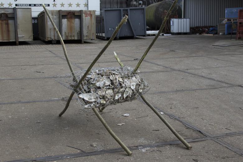 's Werelds eerste oesterwieg: een constructie van afbreekbaar gaas, hout en heel veel schelpen.