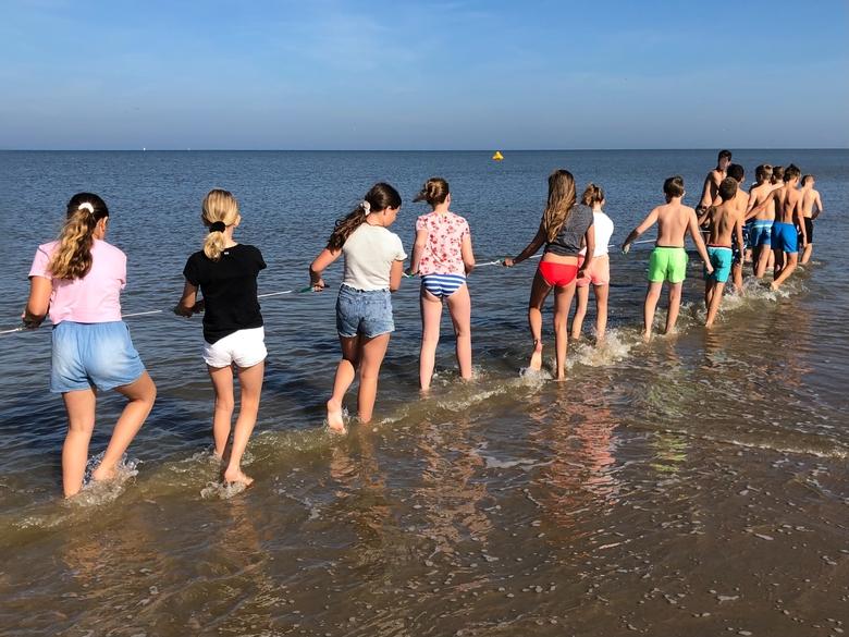 Kinderen lopen door zee met sleepnet