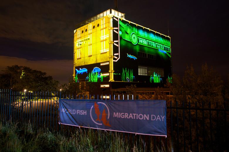 Lichtprojectie bij de Haringvlietsluizen in Stellendam