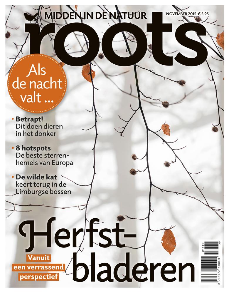 Roots november 2015