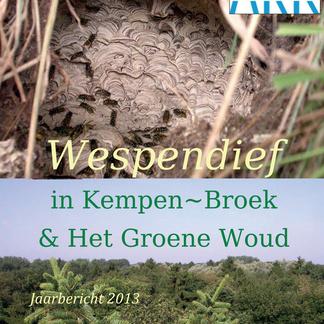 Wespendief in KempenBroek en Groene Woud 2013 cover